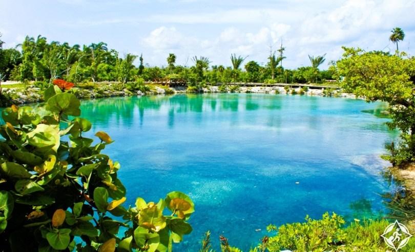 بالصور .. أفضل الأشياء التي يمكنك القيام بها في جزيرة كوزوميل المكسيكية