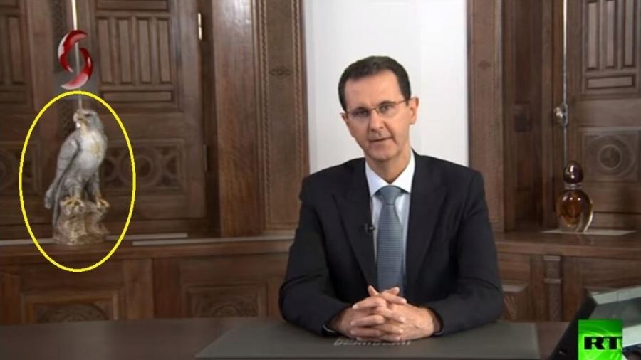 ما حقيقة الطائر الذي انتصب خلف الأسد؟