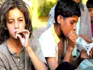 """""""التربية"""" تنفي صحة تعاطي طلبة مدارس المخدرات والكحول"""