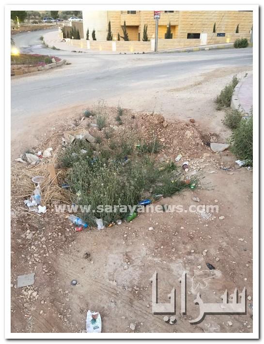 بالصور  ..  شوارع متهالكة ومناهل مفتوحة تهدد المواطنين في الجبيهة