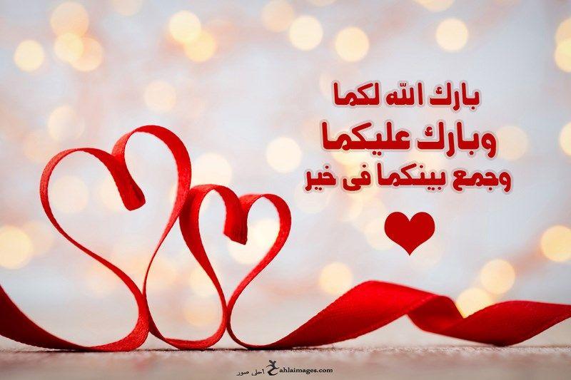 ال حمدان وال الديك   .. مبارك