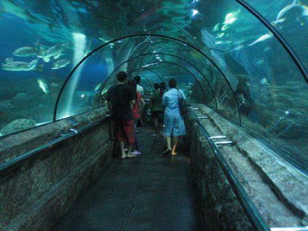 بالصور  ..  افضل الاماكن السياحية في مدينة #جاكرتا #سياحة