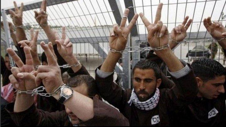 الأعرج: يجب الإسراع بتقديم ملف الاعتقال الإداري للمحكمة الجنائية