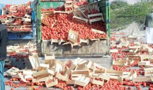 مختصون: 90 % من الصناعات الغذائية بالأردن لا تعتمد على الإنتاج المحلي