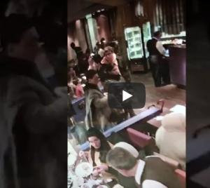بالفيديو ..  سرقة فتاة بطريقة محترفة في مطعم مزدحم