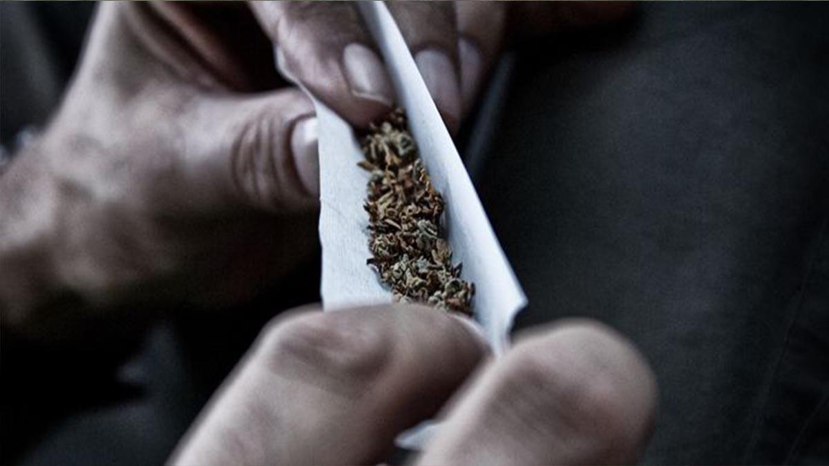 شركة تبحث عن موظف لتدخين الحشيش مقابل 3 الاف دولار شهرياً  ..  تفاصيل