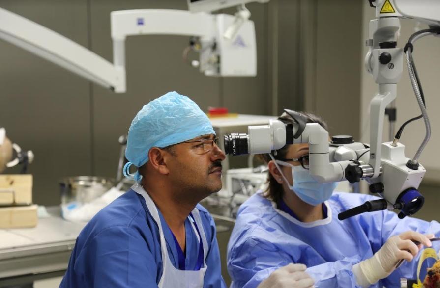 """""""العلوم التطبيقية """" تعقد دورة في جراحة الدماغ للاطباء بين 19 و22 تشرين الاول الحالي"""