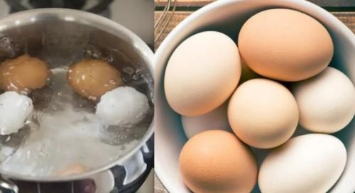 كيف تسلق البيض بدون وعاء ولا ماء؟