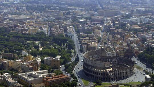 شاهد ..  الخنازير البرية تغزو روما