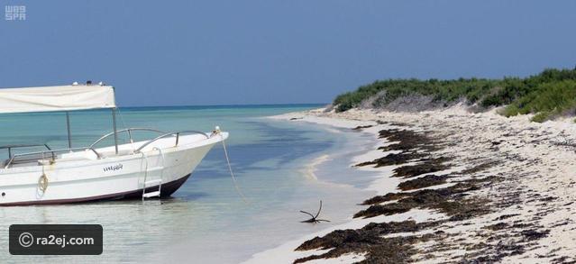 شاهد جمال جزيرة ماركا في السعودية