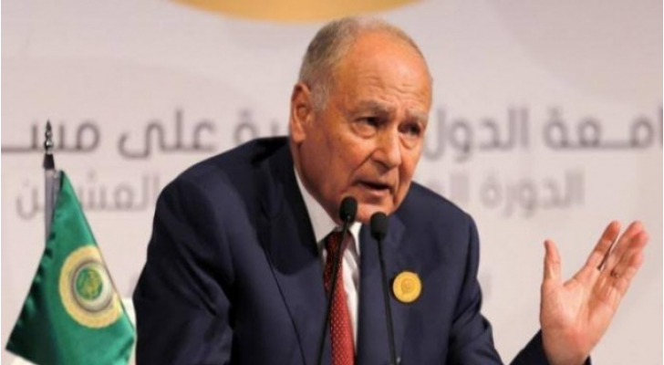 أبو الغيط: حل الدولتين لن يظل متاحا إلى الأبد