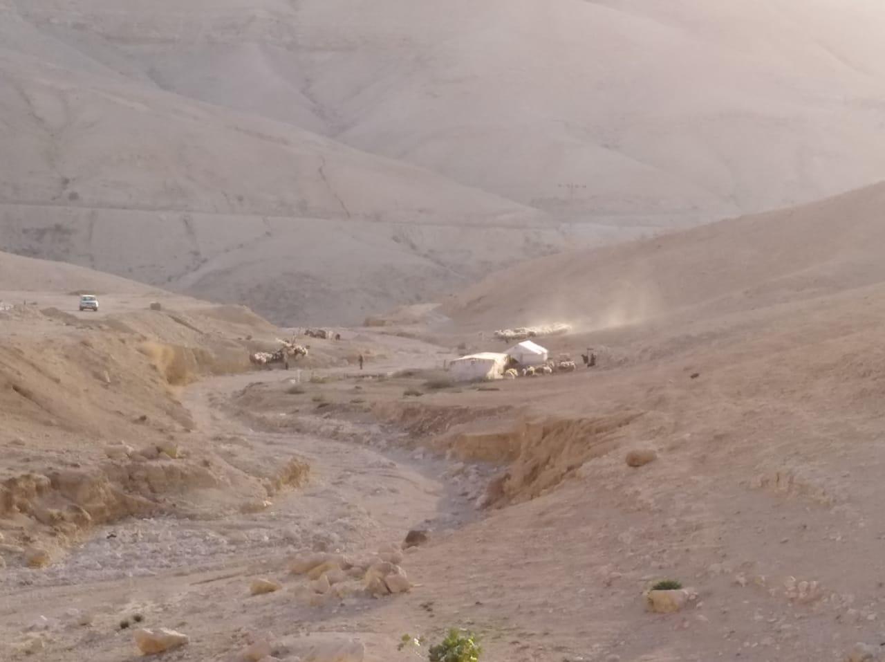 سكان خيم وأغنامهم على جانب الأودية يناشدون الجهات المعنية لنقلهم بمادبا