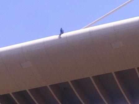 شاب يحاول الانتحار من فوق جسر بالكرك