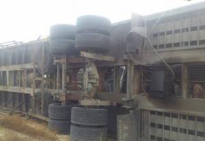 بالصور ..اصابة شخص اثر تدهور شاحنة محملة بالمركبات