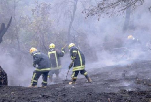 إخماد حريقي أعشاب في عمّان وعجلون