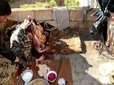 فيديو : عيد الحب في سوريا