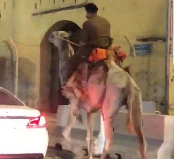 توضيح شرطة مكة حول واقعة الجمل