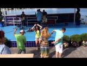 بالفيديو .. صراع لمراقصة فتاة ينتهي بالضرب