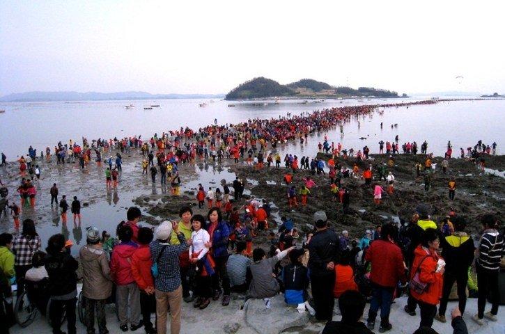 بالصور ..  طريق جيندو ..  معجزة طبيعية وسط البحر تحدث مرتين في العام