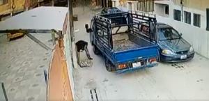 """بالفيديو  ..  تفاصيل جديدة في عملية القبض على شخص سرق اغطية """"المناهل"""" في الزرقاء"""