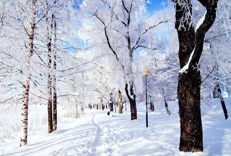 تفسير الثلج في المنام للعزباء
