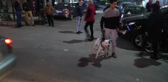 """اصطحاب الكلاب في الشوارع ظاهرة استعراضية واستفزازية مؤذية  ..  """"تفاصيل"""""""