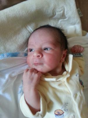 مبروك المولود لمصطفى الشرباصي