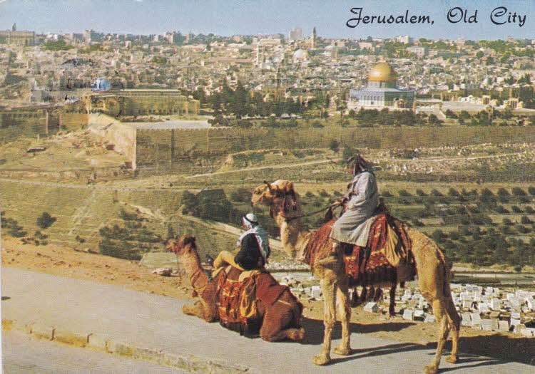 بالفيديو  ..  مدينة القدس عام 1938