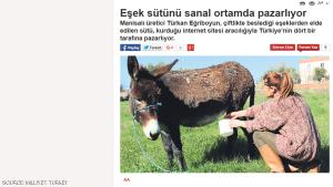 ارتفاع اسعار الحمير في تركيا لزيادة الطلب على حليبها .. صور