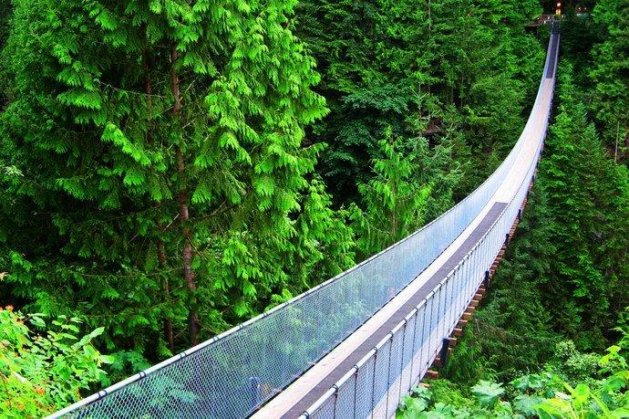 جسر كابيلانو المعلق: مغامرة مثيرة وسط الطبيعة الكندية .. صور
