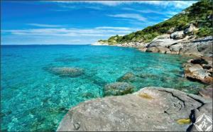 بالصور .. جزيرة إلبا الإيطالية