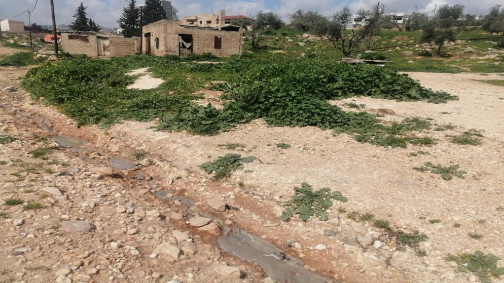 مطالبة بإيجاد حلول لانتشار روائح وتدفق مياه عادمة في حي باب عمّان