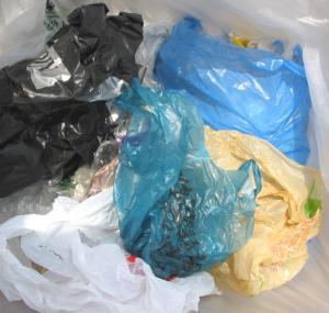 كاليفورنيا أول ولاية أمريكية تمنع الأكياس البلاستيكية