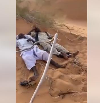 بالفيديو  ..  في اللحظات الأخيرة من حياتهما ..  إنقاذ سودانيين تاها في الصحراء السعودية لثلاثة أيام