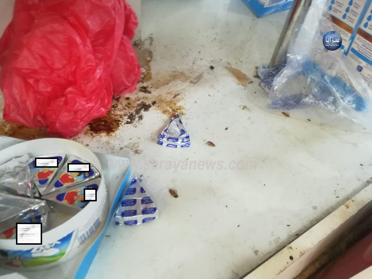 بالصور ..   أبناء الكرك يناشدون إنقاذ المنشآت الغذائية من الحشرات و المكاره الصحية
