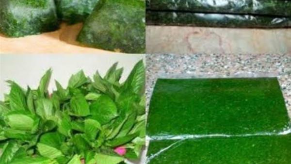 ثلاث طرق مختلفة لتخزين الخضرة فى الفريزر وإخراجها طازجة