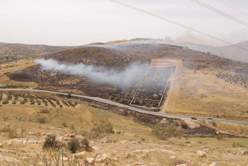 اخماد حريق ياتي على 800 دونم بمنطقة الخلة في الزرقاء