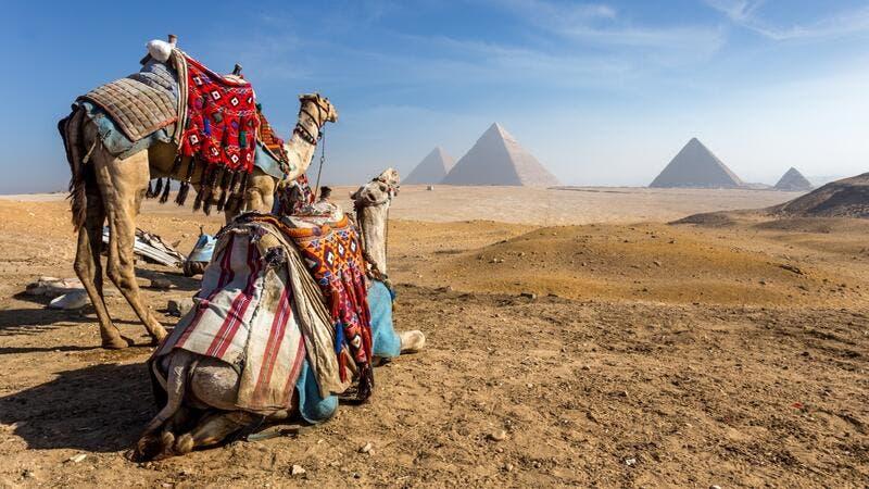 9 طرق للاستمتاع بالقاهرة أثناء وباء كورونا