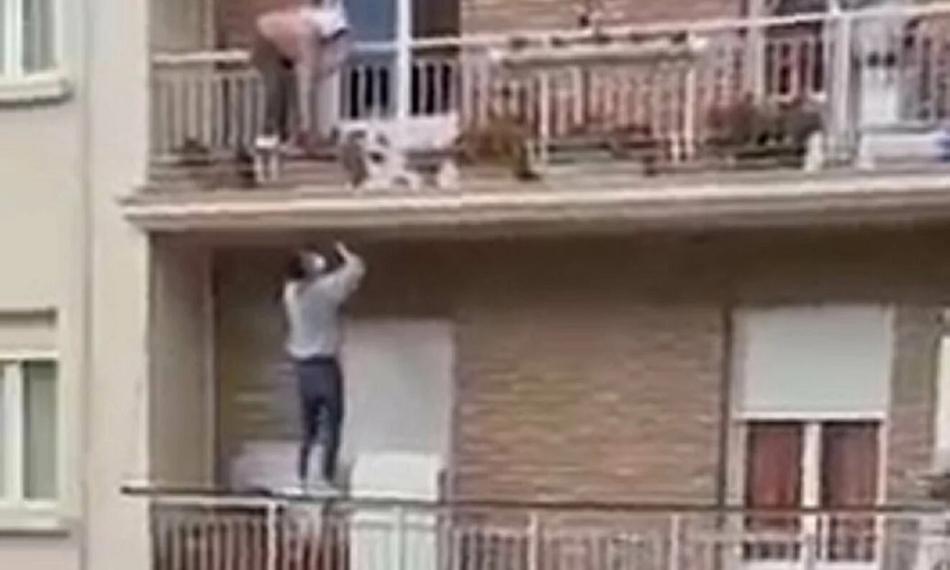 بالفيديو  ..  شاب قام بعمل بطولي ..  تسلّق مبنى من طابقين لإنقاذ مسنة