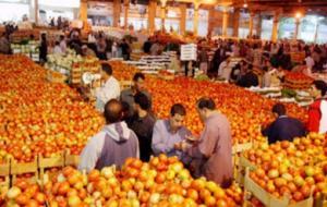 سعر كيلو البندورة ينخفض إلى ثمانية قروش في سوق الجملة