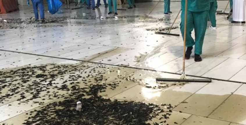 بالصور ..  حشرات بالآلاف تغزو صحن الحرم المكي وتثير مواقع التواصل الاجتماعي