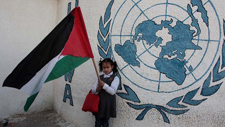 """النمسا تتبرع بـ1.5 مليون يورو لدعم خدمات """"الأونروا"""" بفلسطين"""