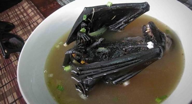 مفاجأة ..  حساء الخفافيش وراء انتشار كورونا!