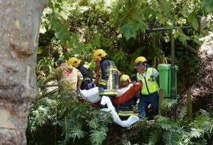 بالفيديو : شجرة تقتل 13 شخصاً خلال احتفال ديني بالبرتغال