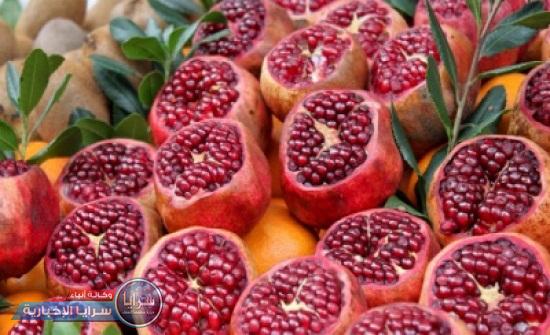 إفتتاح مهرجان الرمان والاكلات الشعبية في اربد