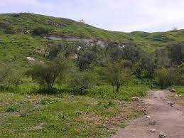 تعرف على قرية تل الصافي شمال غربي الخليل