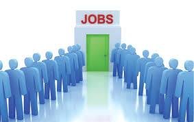 توفر 1500 فرصة عمل في قطاع المطاعم والفنادق