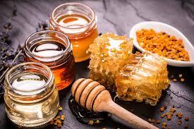 ارتفاع إنتاج العسل الأردني (5ر57)%