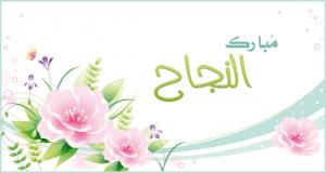 حسن الثوابية  ..  مبارك القبول في نقابة المحاميين