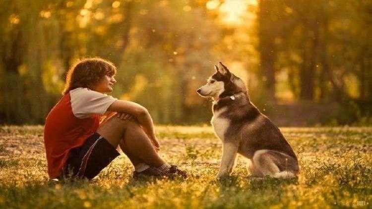 دراسةعلمية .. تربية الكلاب تطيل عمر أصحابها لعدة أشهر